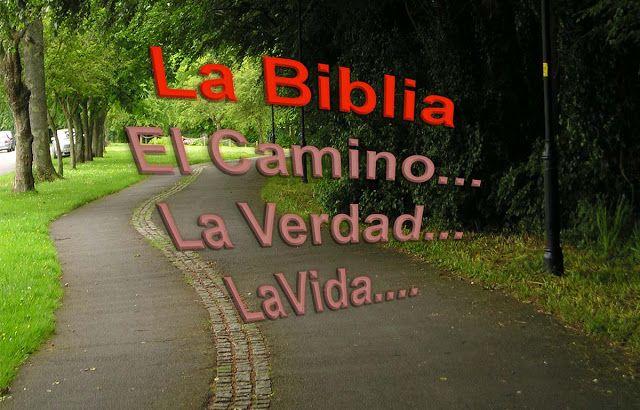 Facil entendimiento de la Biblia Sagrada: Que es la Biblia?