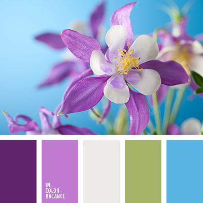 Colors | Combos | Palettes | Color Snap App | Sherwin-Williams | Snowbound White | Lime Rickey Green | Baroness Purple | Flyway Blue | Fabulous Grape