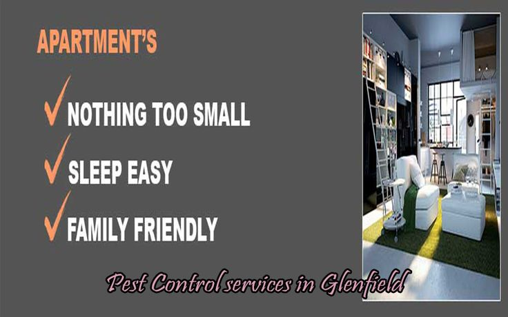 Unfortunately, pests and termites are everywhere whether you like it or not (though the possibility of actually liking pests is absolute zero). Such infestations mean it's an ideal opportunit…