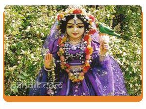 Tulsi Mata Aarti by Rahul Kaushal Astrologer --------------------------------------------------------- !! तुलसी महारानी, नमो नमो, हरी की पटरानी नमो नमो  धन तुलसी पूरण, तप कीनो, शालिग्राम बनी पटरानी !!  !! जाके पत्र मंजर कोमल, श्रीपति कमल चरण लपटानी   धुप दीप नैवेद्य आरती, पुष्पन की वर्षा बरसानी !! http://www.pandit.com/tulsi-mata-aarti/