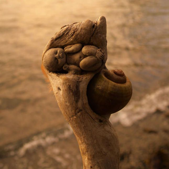Дебра Берние (Debra Bernier) е художник от Виктория, Канада, която прави невероятни скулптори от всичко, което намери на морски бряг -корени на дървета, плевели, черупки от миди, глина... Усъвършенствайки само формата на това, което вече еизваяла природа, Дебра посвещава своите скулптури на океан и хората, които са здраво свързани с него.