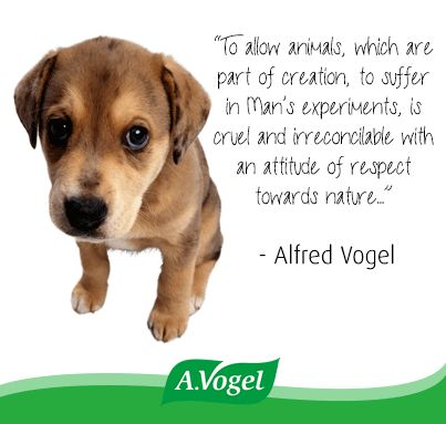 """To allow animals, which are part of creation, to suffer in Man's experiments, is cruel and irreconcilable with an attitude of respect towards nature..."""""""