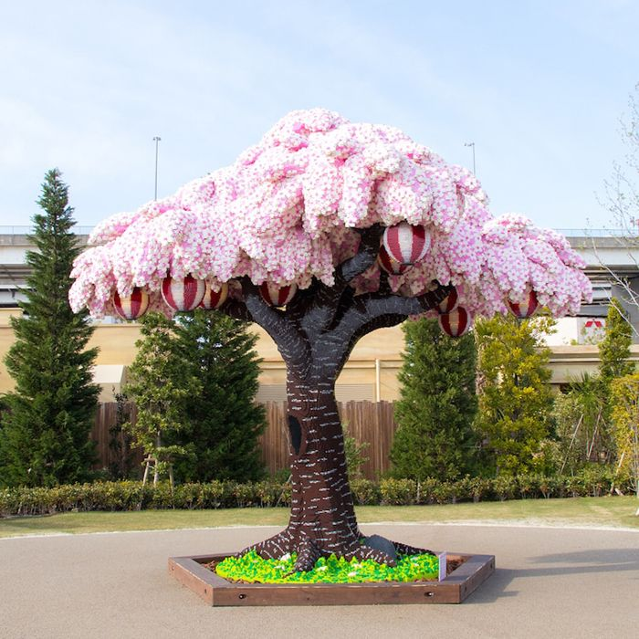 Cherry Blossom Tree Made Out Of Lego Breaks Guinness World Record Cherry Blossom Tree Blossom Trees Lego Tree