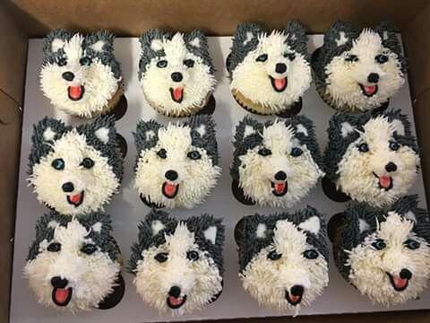 Husky Cupcakes