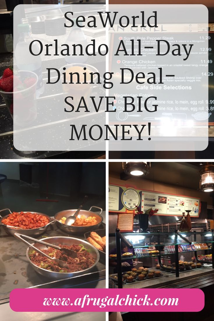 SeaWorld Orlando All-Day Dining Deal Review- Food was the wild card in our budget for our trip- see if the All-Day Dining Deal saved us any money!