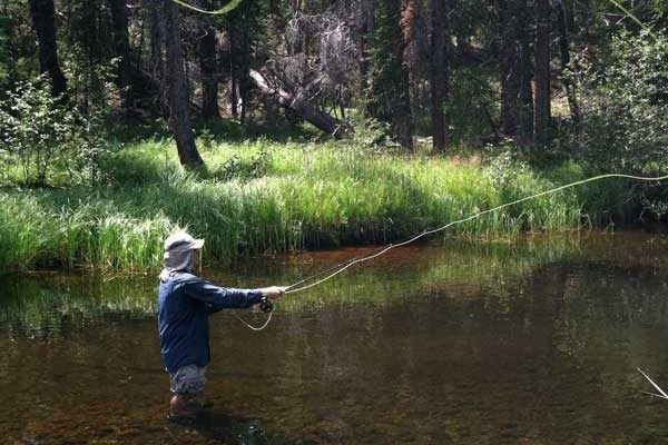 158 best places to camp images on pinterest aspen for Grand lake colorado fishing