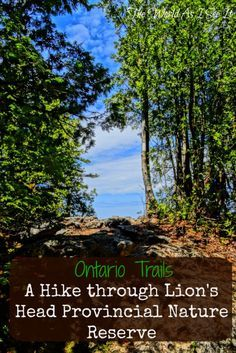 Ontario Trails: Hiking Lion's Head Provincial Nature Reserve