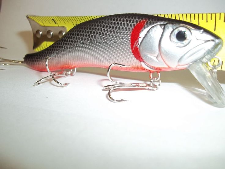 307 best bass striper snook fishing lures images on for Striper fish bait