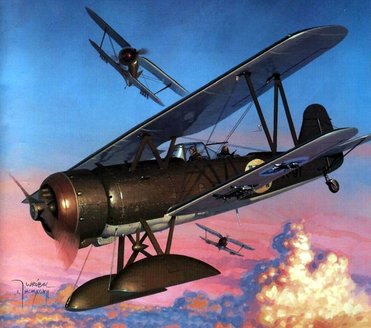 Finnish Fokker CX under attack