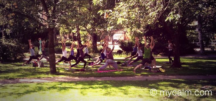 Good Morning Yoga at Weinbergspark Berlin Mitte