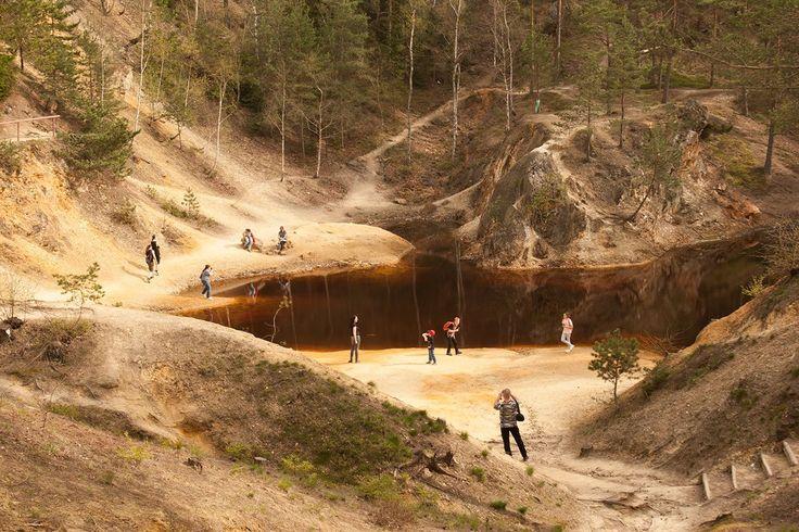 8 miejsc w Polsce, które warto odwiedzić: Krzywy Las pod Gryfinem, Przylądek Stilo, Kolorowe Jeziorka, Kanał Elbląski, Jaskinia Raj, Biebrzański Park Narodowy, Arboretum Wirty, Suwalski Park Krajobrazowy. #podróż #Polska #inspiracje #100club