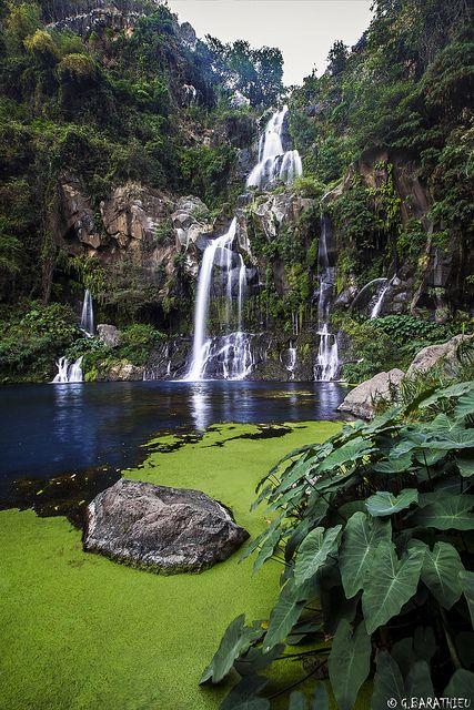 Bassin des Aigrettes - Isle de La Reunion, Etang, France https://www.hotelscombined.fr/Place/Reunion.htm?a_aid=150886                                                                                                                                                                                 Plus