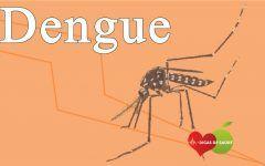 Os 20 Principais Sintomas de Dengue