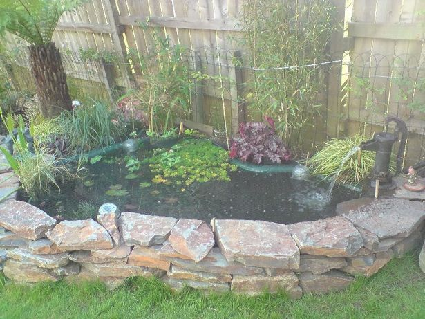 11 best images about p is for patio pond and porch on for Preformed garden waterfalls