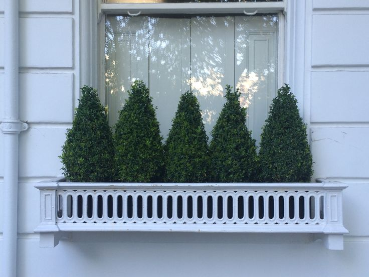 31 of the Best Window Boxes in London Photos | Architectural Digest [A regiment of low-maintenance boxwood topiaries.]