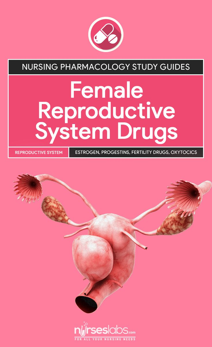 Biology essay on feedback processes of the reproductive system.?