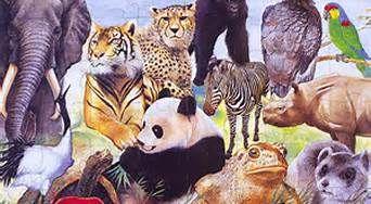 Endangered Species   ;)