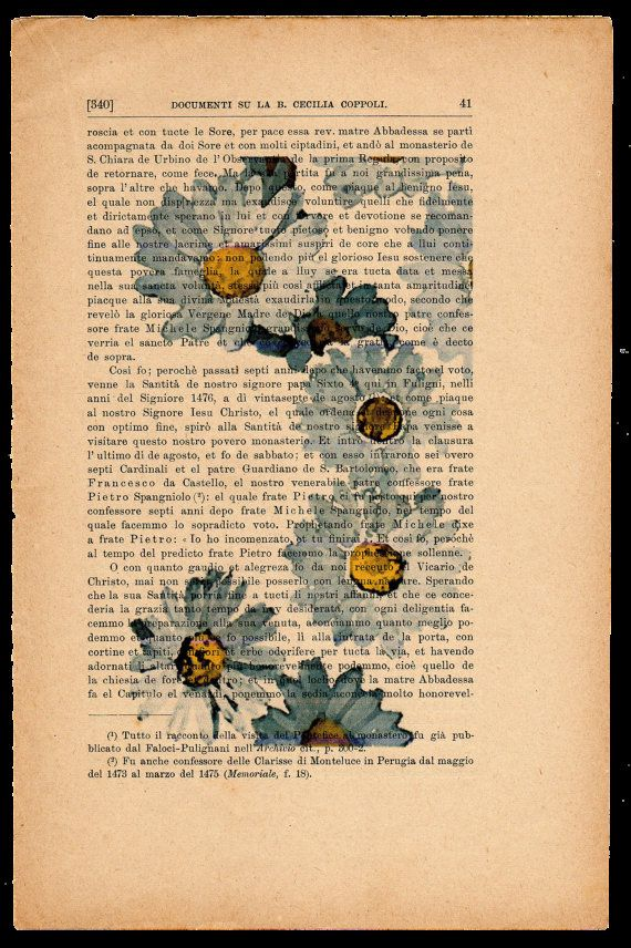 Stampe di fiori su fogli di carta. Pag.41  di AntichiRicordi, €6.00