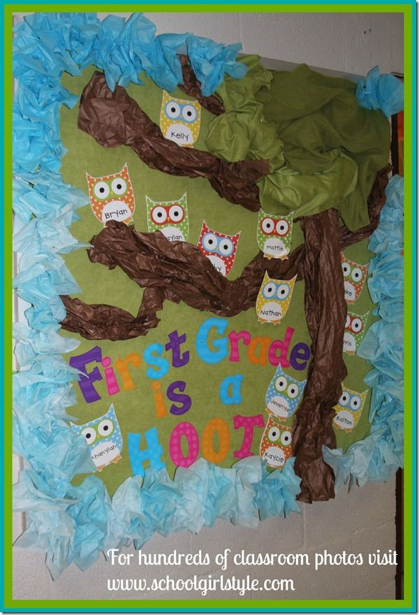 Owl classroom theme and bulletin board decor from Schoolgirl Style  www.schoolgirlstyle.com