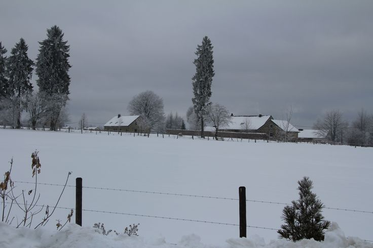 Massacre Malmedy - Baugnez Ardennen december 1944 werden 90 Amerikaanse krijgsgevangenen   door de SS vermoord.