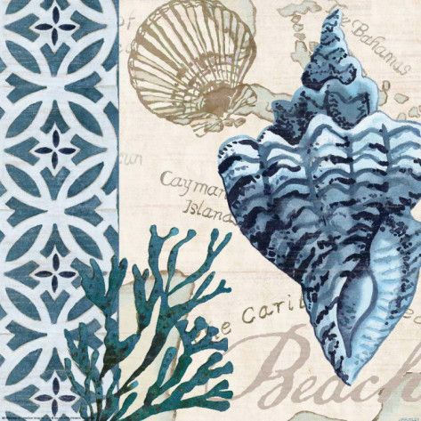 Trade Wind Whelk Art by Jennifer Brinley