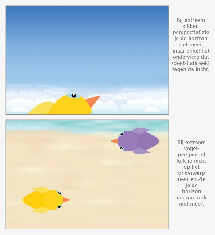 Illustratie van extreem kikkerperspectief en extreem vogelperspectief
