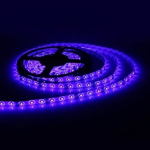 24W 3528SMD 300-LED 5m Blue Light IP65 Waterproof LED Strip for Home/Car Decoration (DC 12V)