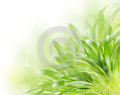 Abstract Green Spring Background Stock Image - Image: 29323741