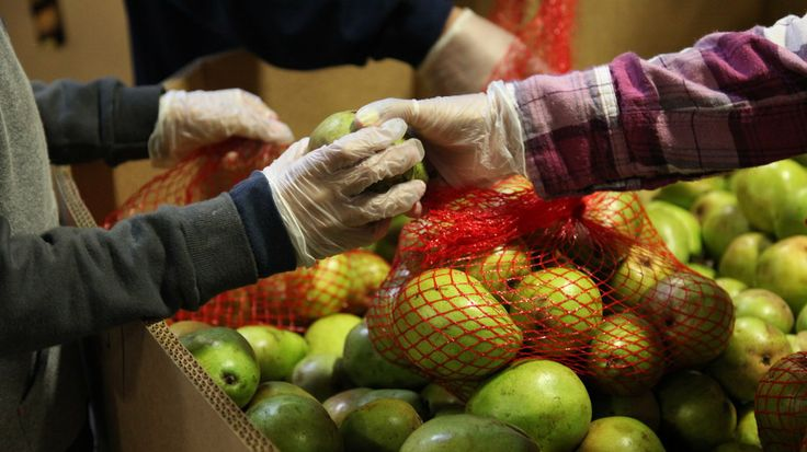 States are taking an out provided by Congress to avoid cutting food stamp benefits to families, many of whom already depend on food banks li...