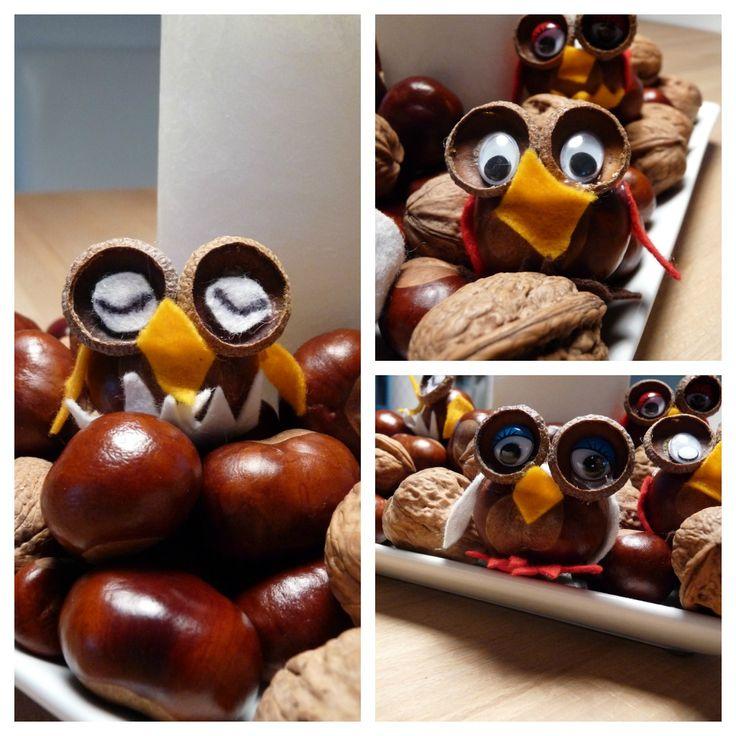 Herzenssachen: Herbst - Eulen aus Eicheln und Kastanien - Autumn DIY with chestnuts and acorns - owls