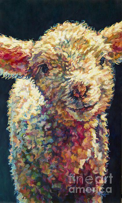 Lamb,Sheep,baby Animal,Farm,Farm Animal,Peaches,painting,Art,animal art,oil,oil on linen,Griffin,Patricia A Griffin,Patricia Griffin