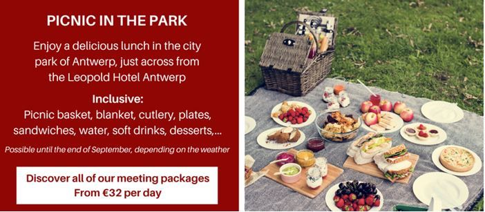 Meeting lunch - Picnic in the parc