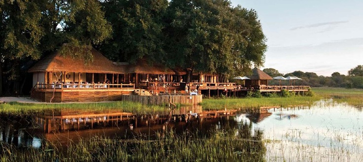 29++ Moremi game reserve location collection