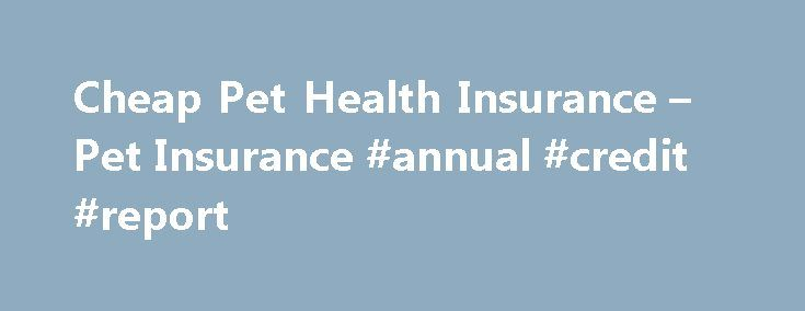 Cheap Pet Health Insurance – Pet Insurance #annual #credit #report http://insurance.remmont.com/cheap-pet-health-insurance-pet-insurance-annual-credit-report/  #cheap pet insurance # Cheap Pet Health Insurance Pet Games – play free pet games online. G e t t i n g P e t H e a l t h I n s u r a n c e F o r C h e a p You dear your pets. They are […]The post Cheap Pet Health Insurance – Pet Insurance #annual #credit #report appeared first on Insurance.