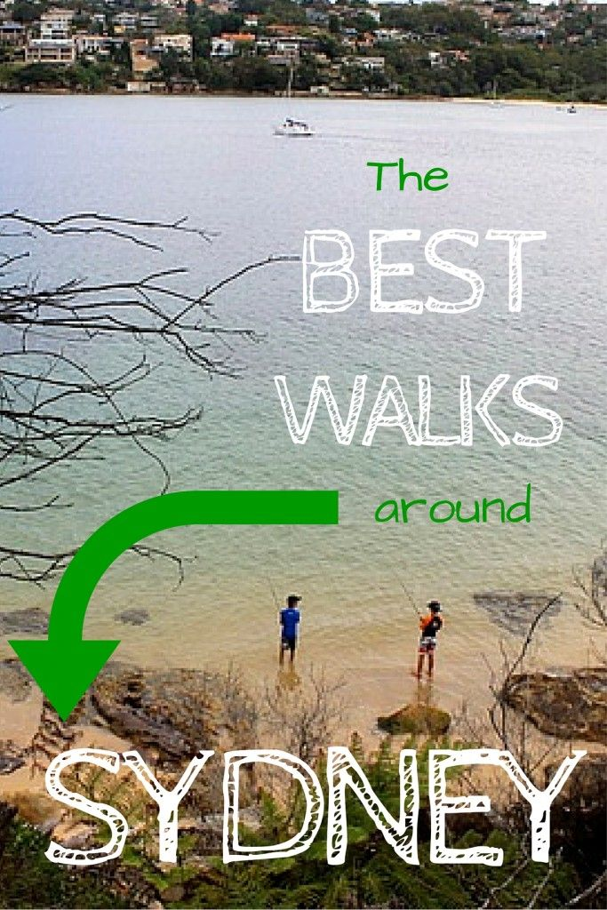 The best walks to take around Sydney