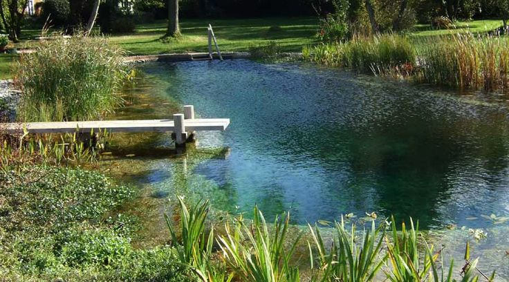 All about Natural Pools and Ponds. The ultimate backyard recreation.
