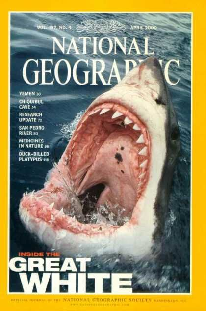 National Geographic Covers | national geographic 1253 via ...