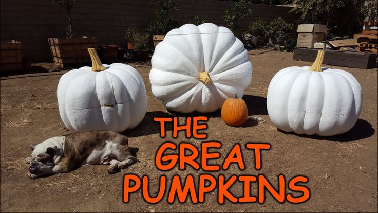 Carving Giant Pumpkins - Sculpting Foam Props & Decorations - YouTube