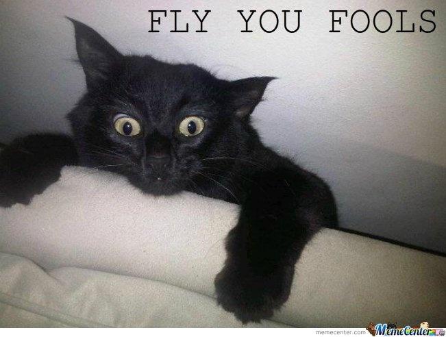 58 Best Basement Cat Vs Ceiling Cat Images On Pinterest