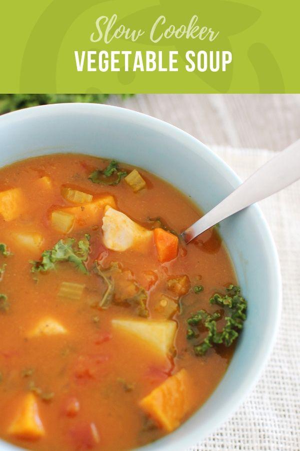Slow Cooker Chicken Vegetable Stew Recipe Vegetable Stew Recipe Vegetable Stew