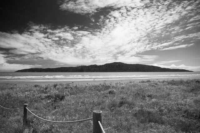 Kapiti Island | © Elyse Childs Photography