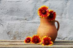 Старый керамический кувшин с цветами stock photo