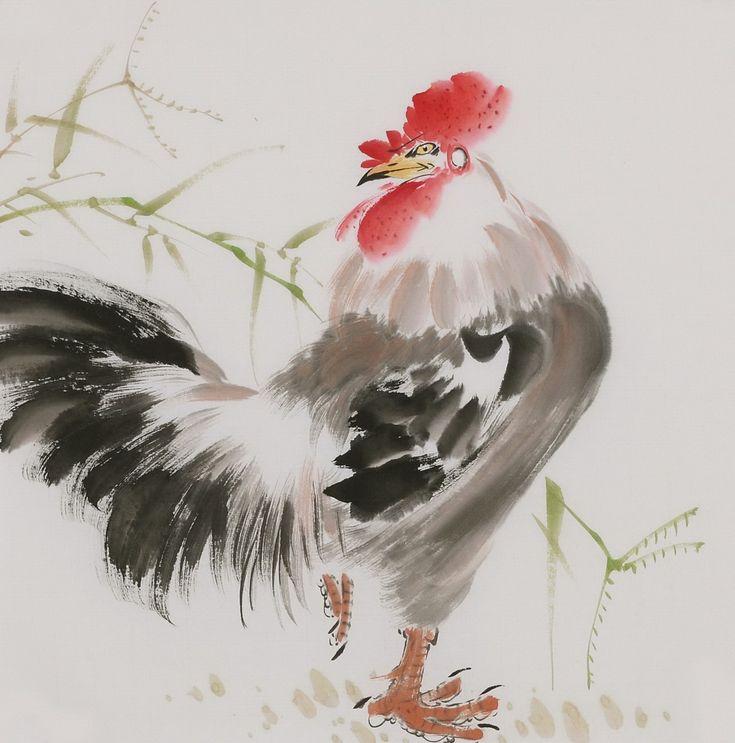 Chicken - CNAG006675