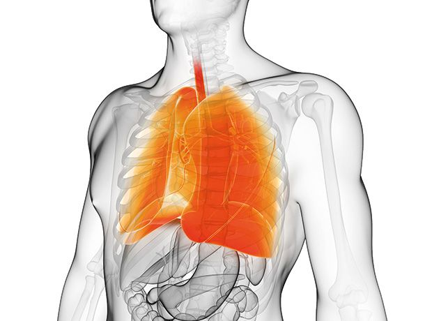 #Therapy #NHS Hospital pneumonia deaths drop 14 percent  The UK study, undertaken by the Department of Respiratory Medicine, Nottingham University Hospital's NHS Trust and the BTS, analysed data from 23,315 UK hospital admissions for community acquired pneumonia (CAP) across six years. ... These include ... http://www.pharmatimes.com/news/hospital_pneumonia_deaths_drop_14_percent_1103634