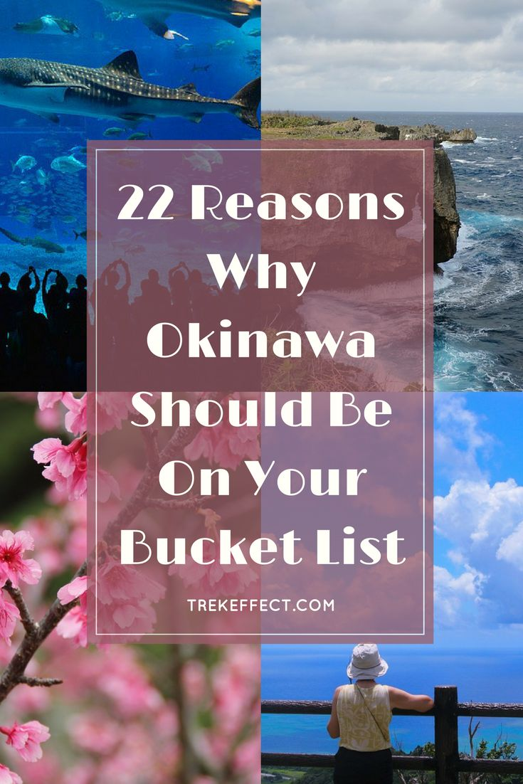 Whether you are a history buff or someone who's overly fond of sightseeing, there are tons of good reasons to visit Japan's southernmost prefecture. Here are a few good reasons why Okinawa should be on your bucket list of places to visit.