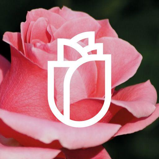 branding for alenquer, portugal.