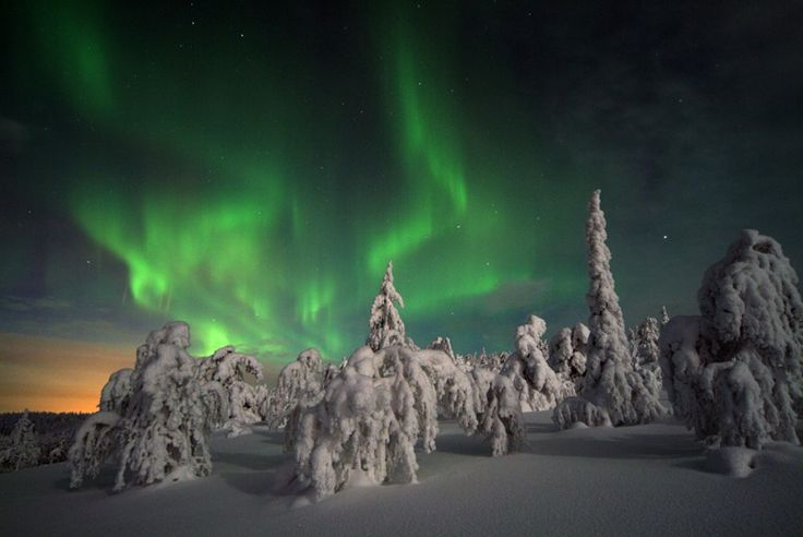 Finnish Winter Adventure - Family Holiday  #Finland