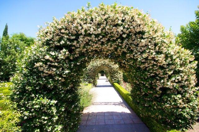 The 25 Best Thousand Oaks California Ideas On Pinterest Paradise California Hikes In