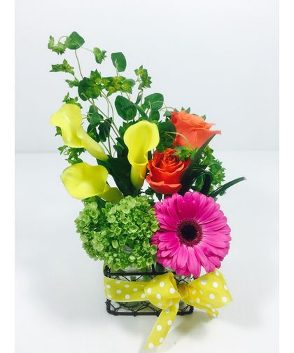 Pitter Patter-This arrangement will bring as many smiles as a cool rain shower on a hot summer day!   Designed in 4 small milk bottles, this colorful mix with a polka dot bow can be sent for any occasion. #ToblersFlowers #KansasCityFlowers #GetWellFlowers