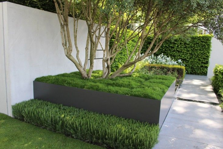 1000 images about jardin on pinterest hedges buxus and for Jardin wilson nice